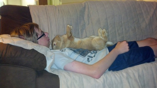 Nobunny move, or the Boy gets it!