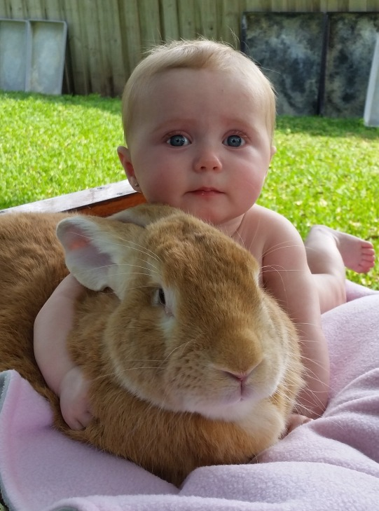 Little girl...BIG bunny