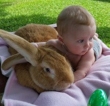 Every little girls needs a giant bunny
